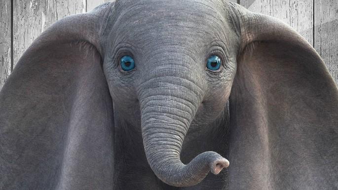 15 - Dumbo