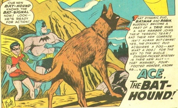ace-bat-mascota