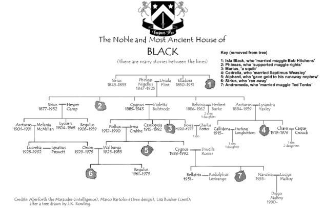 casa-black