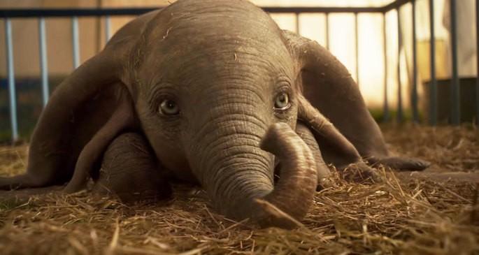 Dumbo Películas Infantiles