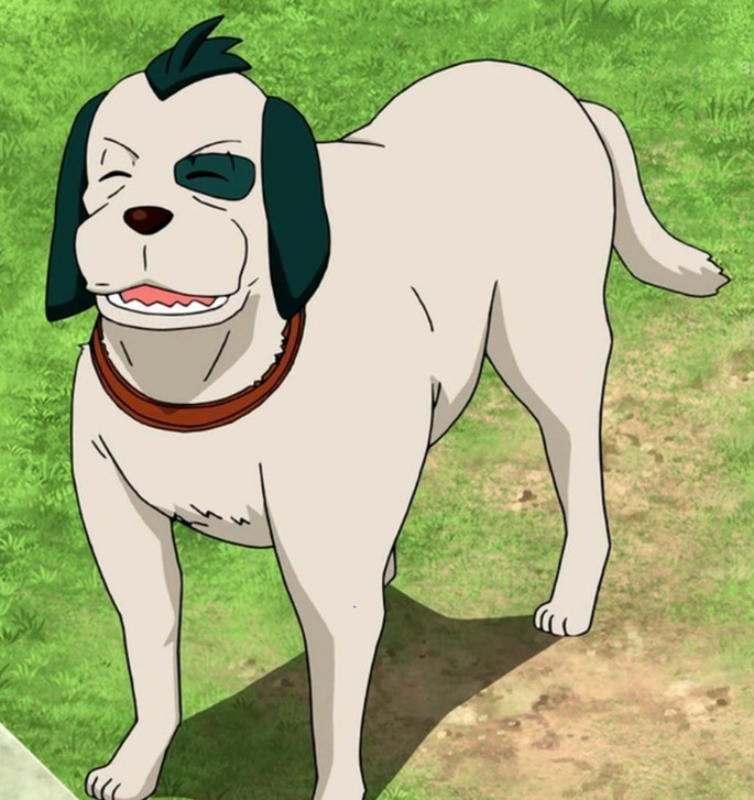 Sasuke Inazuma